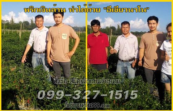 use_31.jpg (560×361)